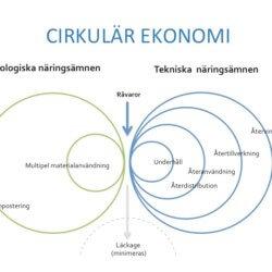 Cirkulär ekonomi i fokus hos Sustema